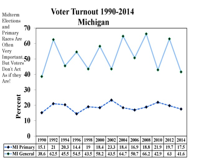 Michigan S Gubernatorial Voter Turnout Lowest Since 1990